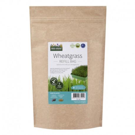 健康系列 - 有機小麥草 (補充裝)