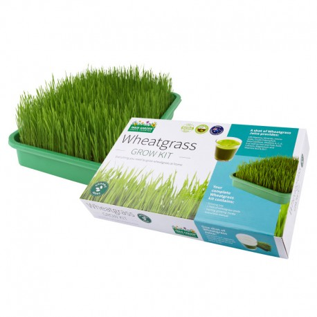 Health Collection - Organic Wheatgrass Kit