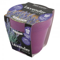 Health Collection (Bio Pots) - Lavender
