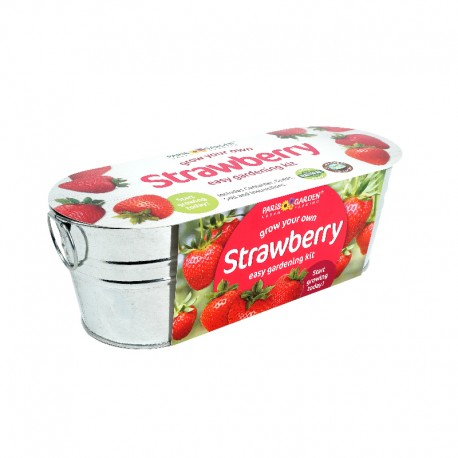 Garden Chef Collection (Zinc Oval Windowsill) - Strawberry