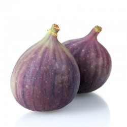 Turkey Figs (Jumbo Size)