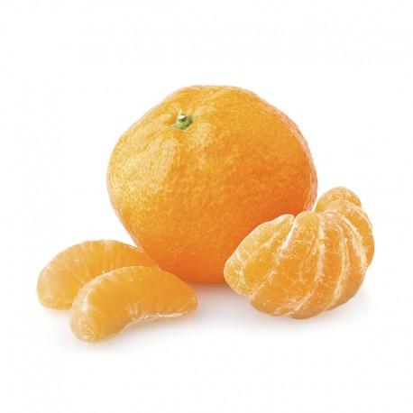 Korea Tangerine (6Pcs)