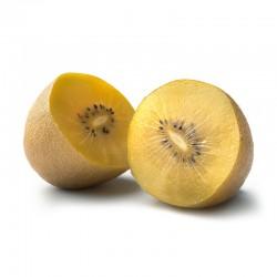 Italy Zespri Sun Gold Kiwi - Jumbo