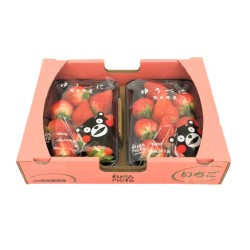 Japan Kumamoto Strawberry (1Box OR 2Boxes)