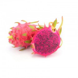 "Vietnamese ""King Ping"" Red Flesh Pitaya (L)"