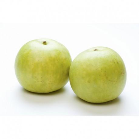 Japanese 20th Century Pear