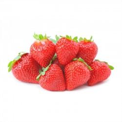 Japan Shizuoka Strawberry