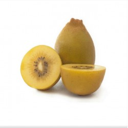 Japan Ehime Zespri Golden Kiwi - Jumbo (1Pc OR 2Pcs)