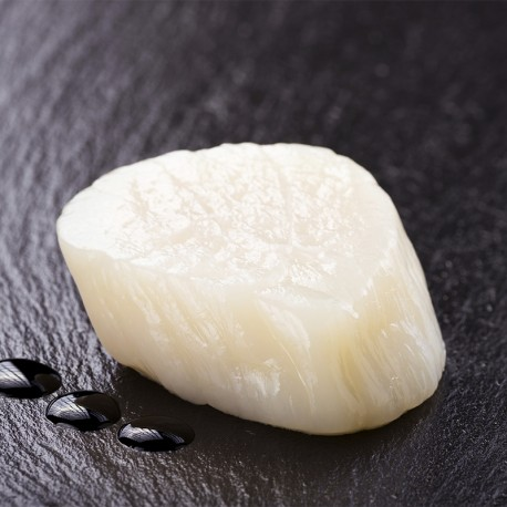 Frozen Japanese Scallop Sashimi