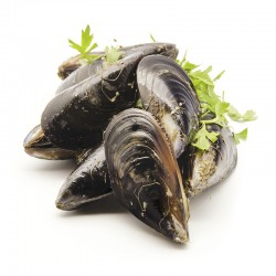 Frozen Chili  Blue Mussel (1000G)