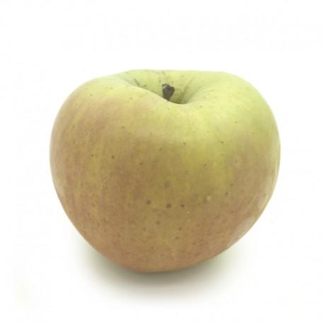 日本 青森县「名月」苹果