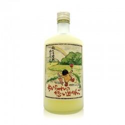 日本青森县100%苹果汁