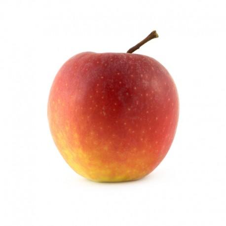 New Zealand Rose Apple (4Pcs)